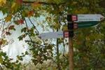 El Picazo en otoño